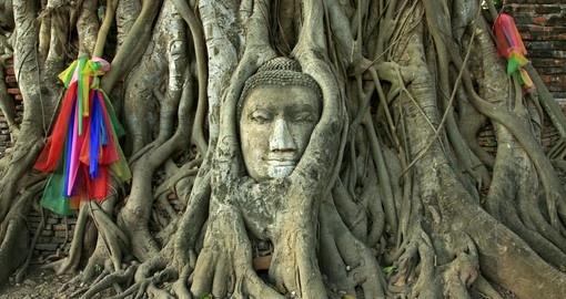 Cambodia - Nature and Wildlife